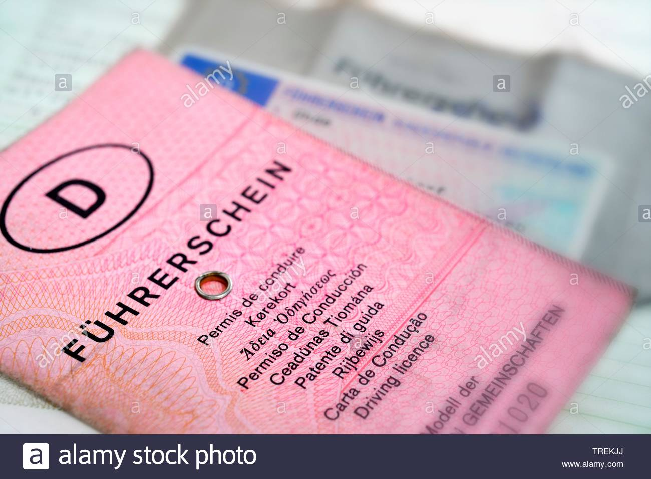 German and EU driving licenses - phased plan to renew driving license Stock Photo