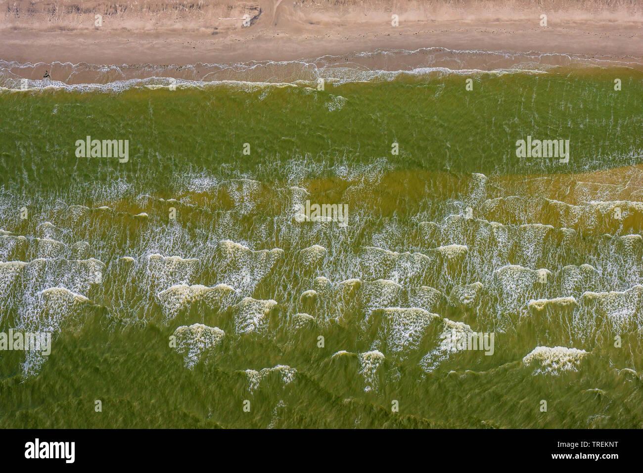 Wellen im Schleswigholsteinischen Wattenmeer, Luftbild, Deutschland, Schleswig-Holstein, Schleswig-Holsteinisches Wattenmeer Nationalpark   aerial of - Stock Image