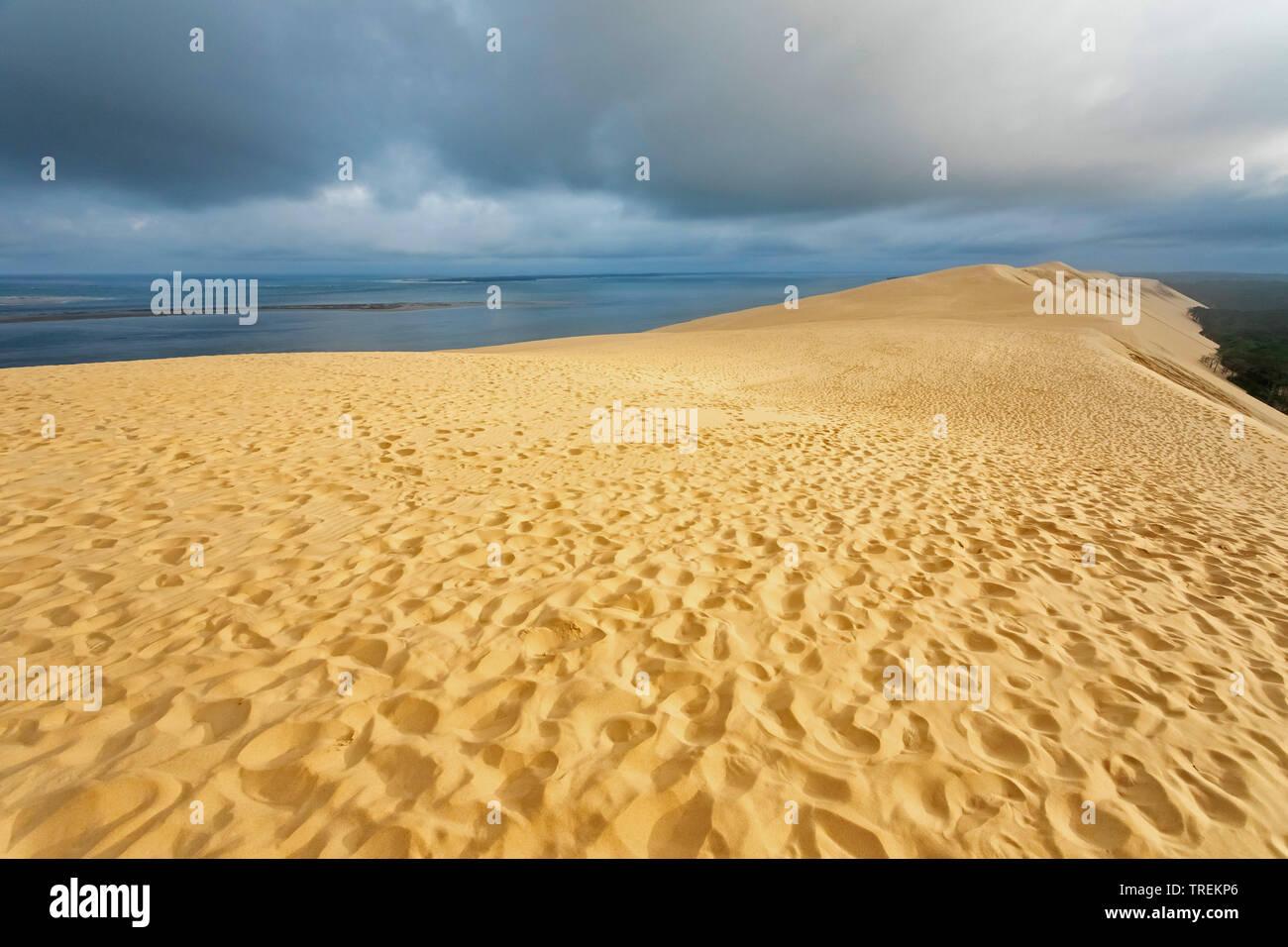 Dune du Pilat, groesste Wanderduene Europas, Frankreich, Arcachon |  , Dune of Pilat, tallest sand dune in Europe, France, Arcachon | BLWS528660.jpg [ - Stock Image