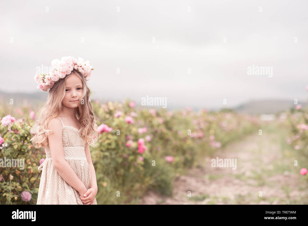 1e85d9bb6 Smiling kid girl 4-5 year old posing in rose garden wearing stylish dress  and