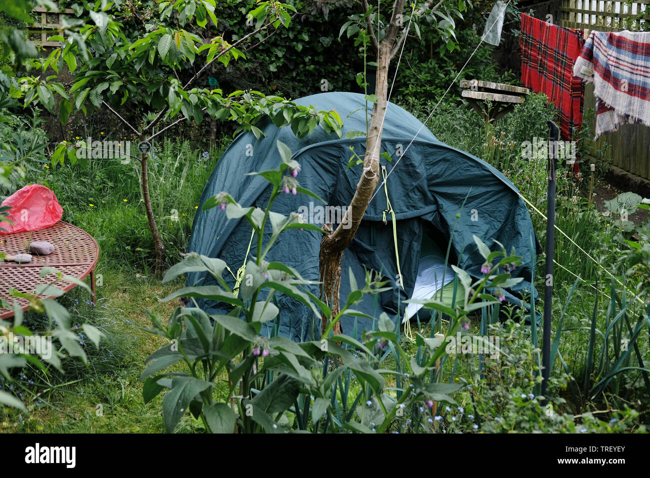 A Tent Set Up In A Very Small Garden Stock Photo Alamy