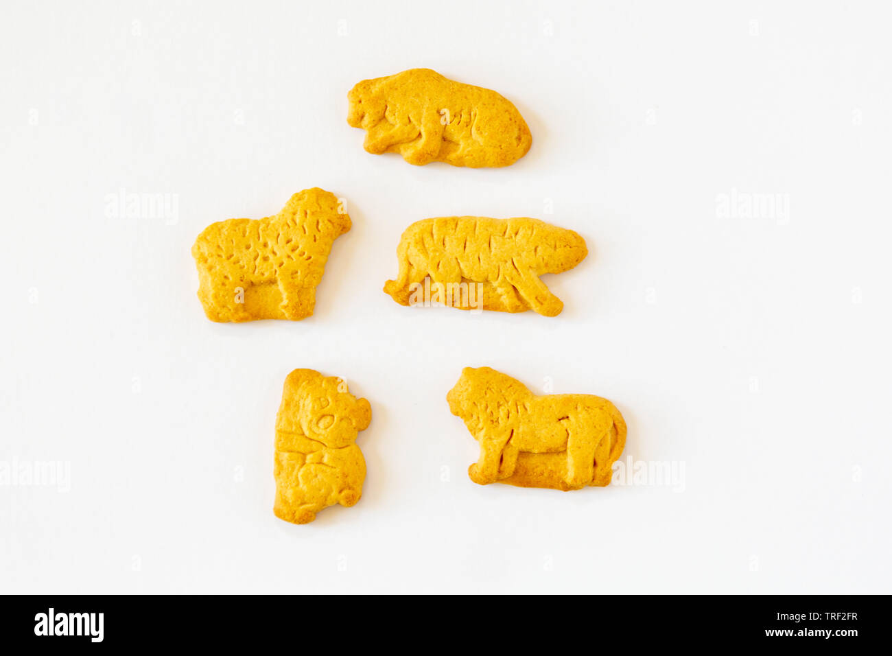 Animal Shape Crackers High Resolution Stock Photography And Images Alamy