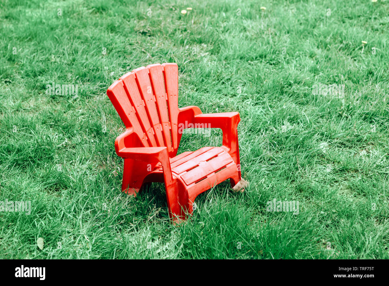 One Red Wooden Plastic Muskoka Adirondack Chair Standing On Green Grass In  Park Outside On Spring