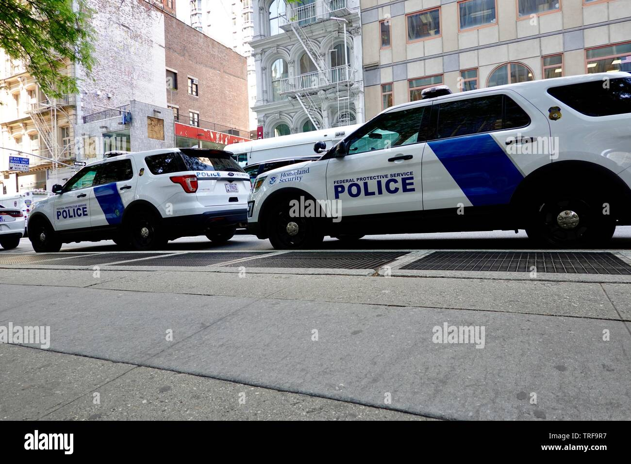 Department of Homeland Security, Federal Protective service police vehicles parked on Broadway at Federal Plaza, New York, NY, USA. Stock Photo
