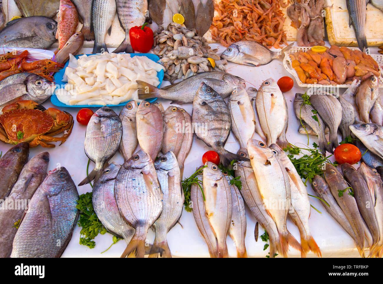 fresh fish, seafood from Atlantic ocean ...