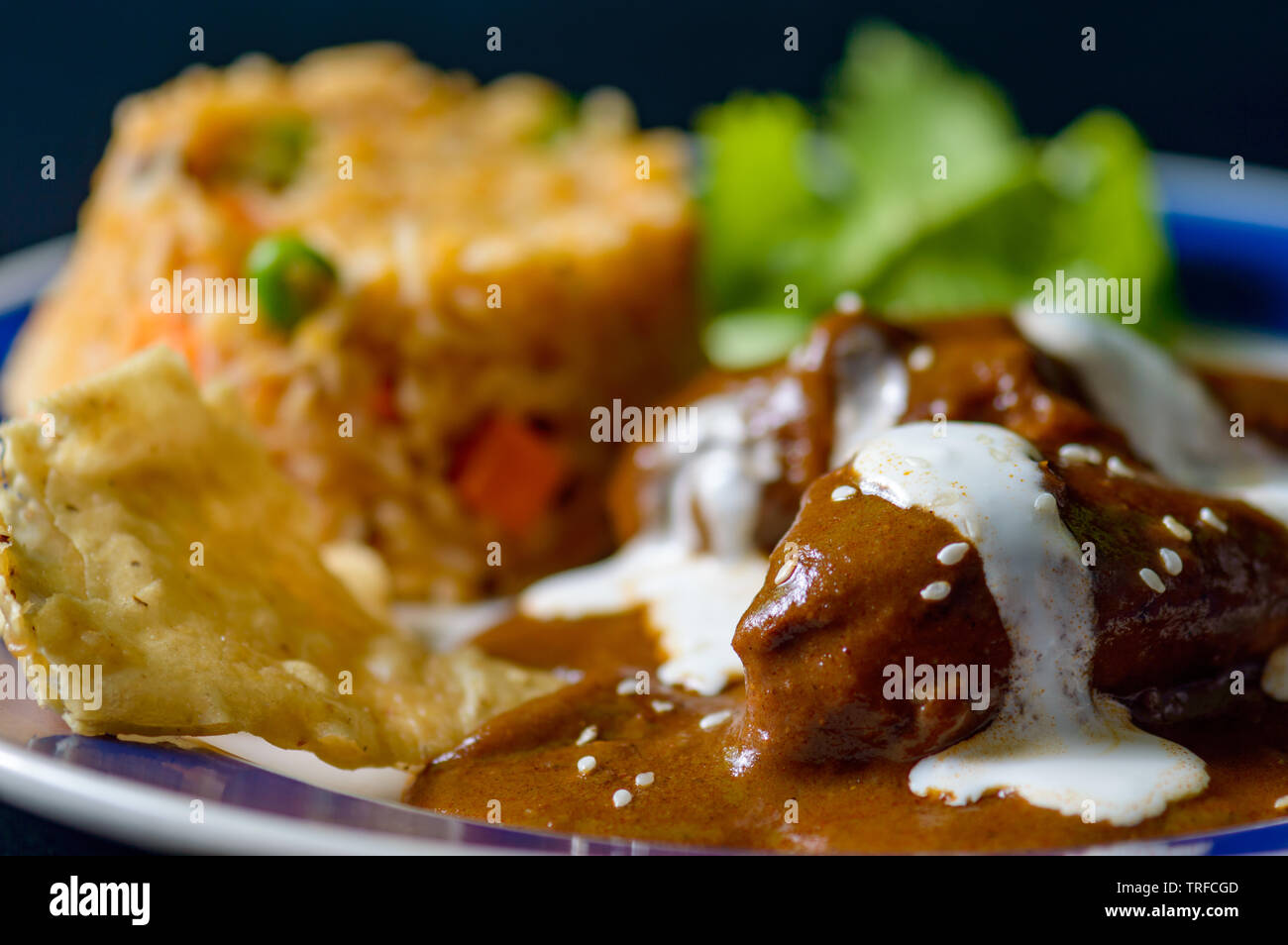 Mole Poblano sauce with chicken and Mexican rice, traditional specialty food of Oaxaca and Puebla. Food, restaurants, menus, Mexico, travel, tradition Stock Photo