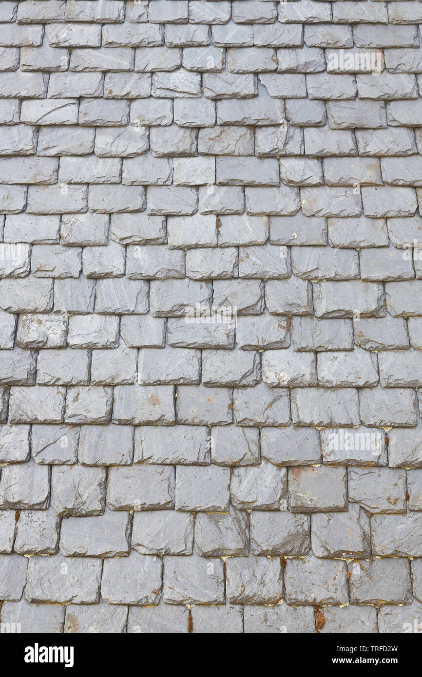 Slate tiles on a roof - Stock Image