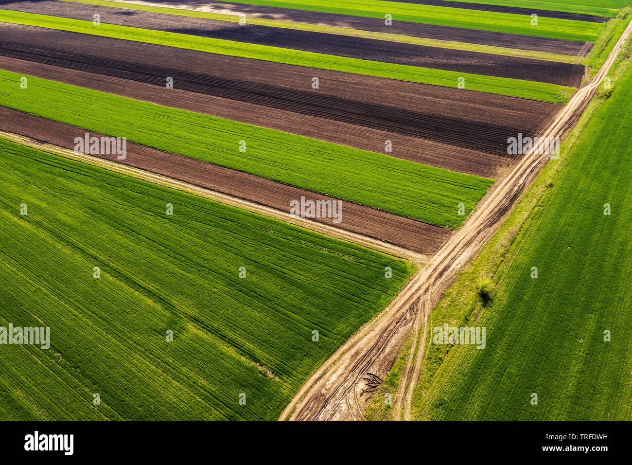Aerial view of countryside agricultural fields patchwork as abstract background from drone pov Stock Photo