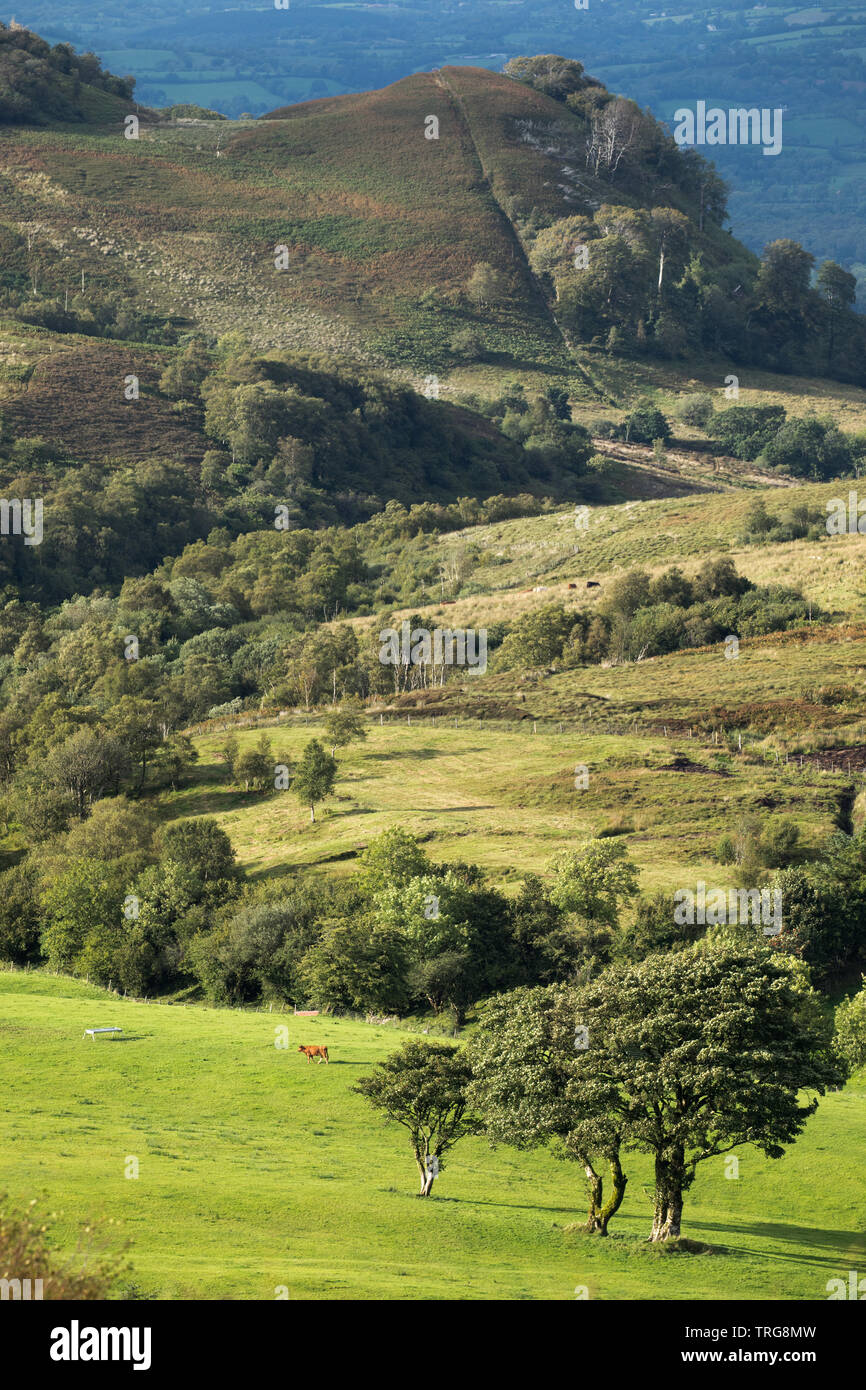 The border country from Gortalughany, Co Fermanagh, Northern Ireland, UK - Stock Image