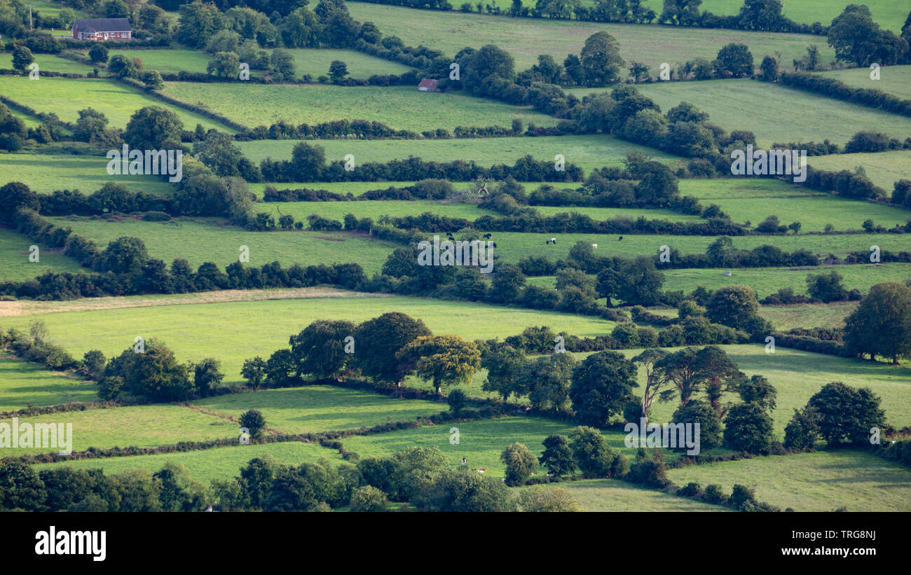 The border country from Slieve Gullion, Co Armagh, Northern Ireland - Stock Image