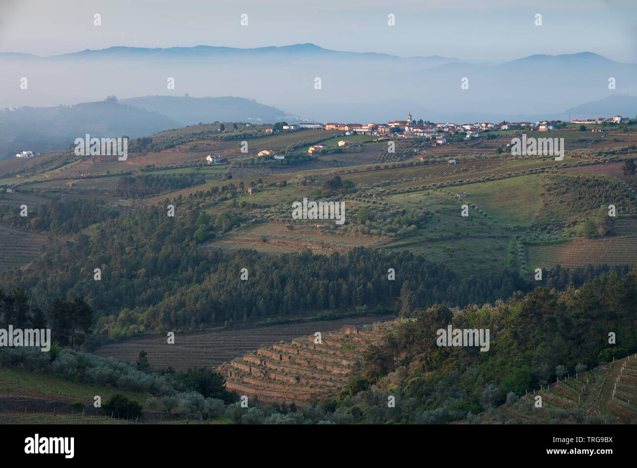 The Douro Valley wine region from Sabrosa, Vila Real, Portugal - Stock Image
