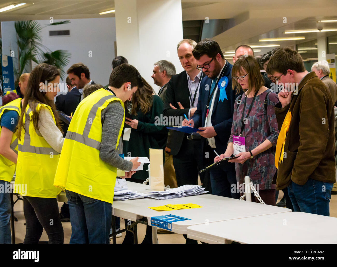 Dan McCroskie, Scottish Conservative party candidate at Leith Walk by-election count at Edinburgh City Council, Edinburgh, Scotland, UK - Stock Image