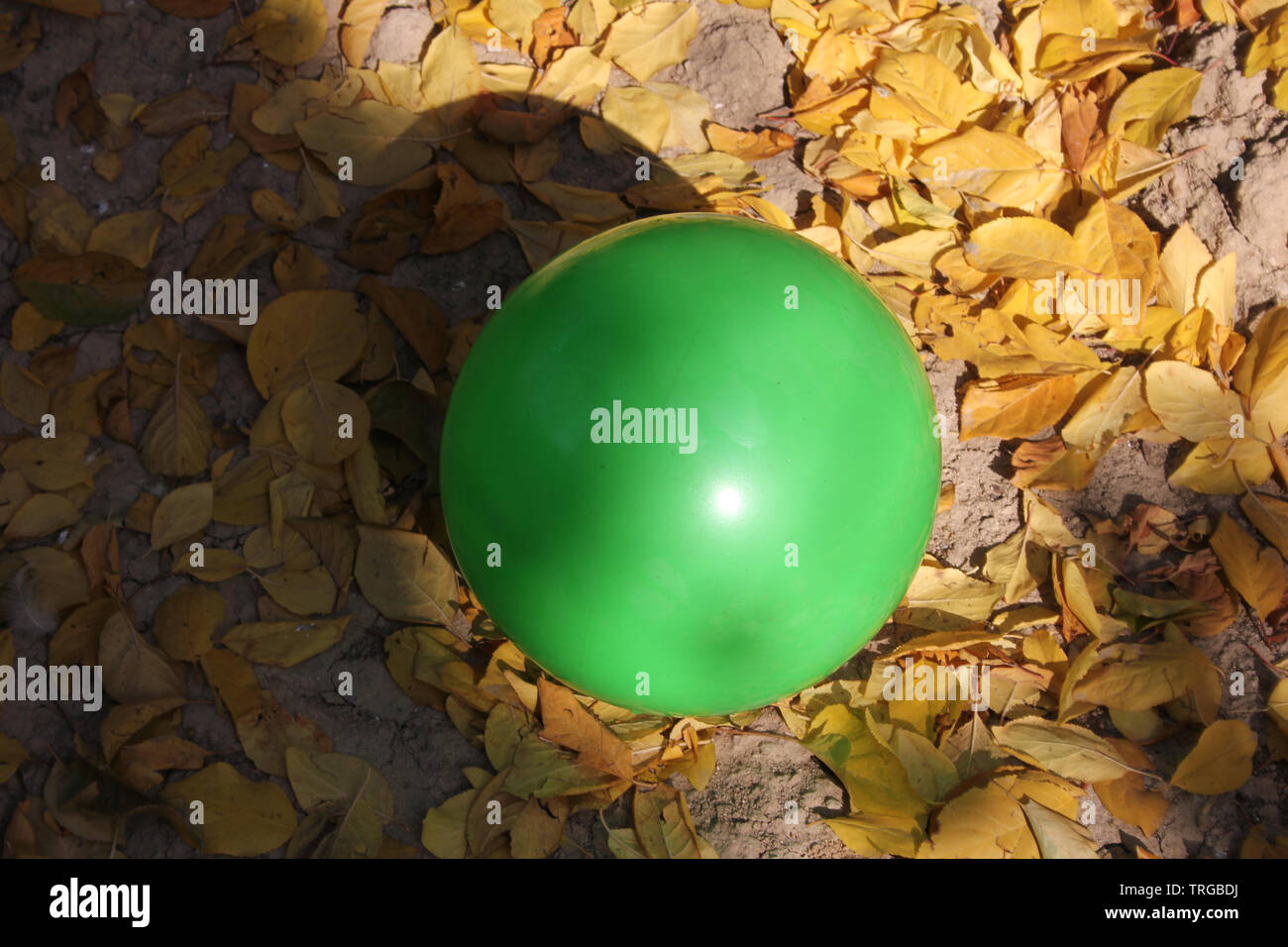 Green Ball - Stock Image