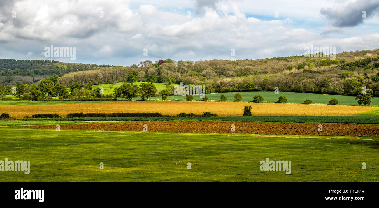 Farmland near the village of Stanway in Gloucestershire showing bands of different colours ij the fields and hillside and sky. - Stock Image