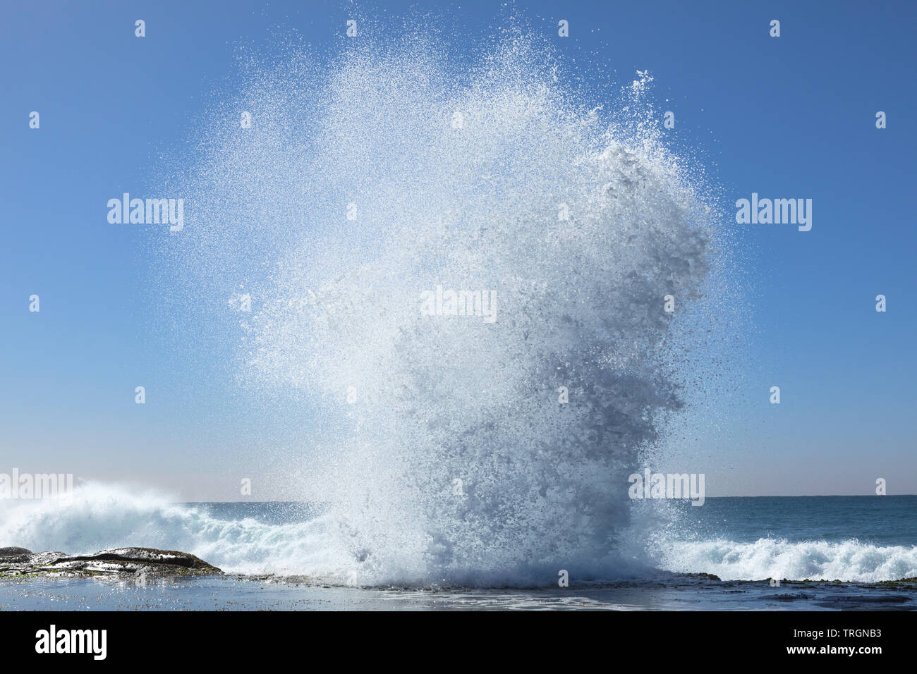 Australia, NSW, Yamba, a large wave action forming - Stock Image