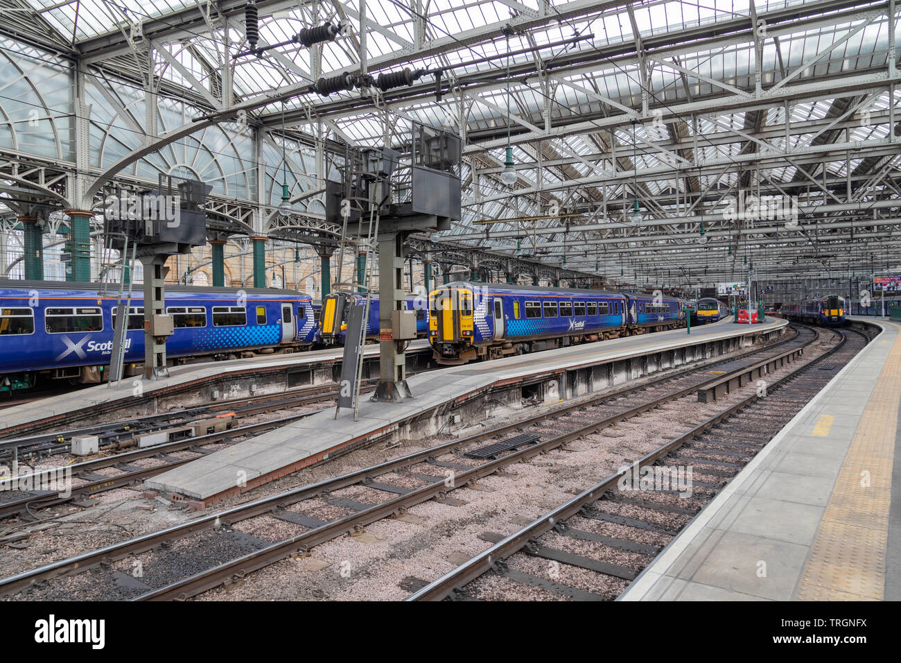 Inside Glasgow Central Station showing a selection of blue Scotrail trains - Stock Image