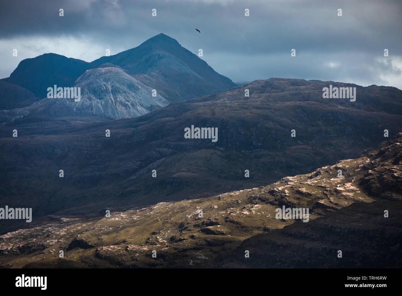A bird soaring over the Torridon Mountains, Wester Ross, Scotland, UK - Stock Image