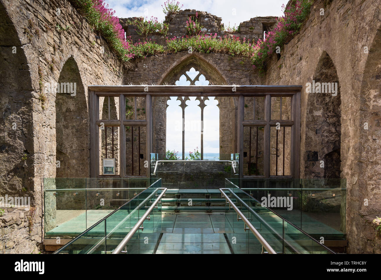 Alina's Chapel, Oystermouth Castle, Wales, UK Stock Photo