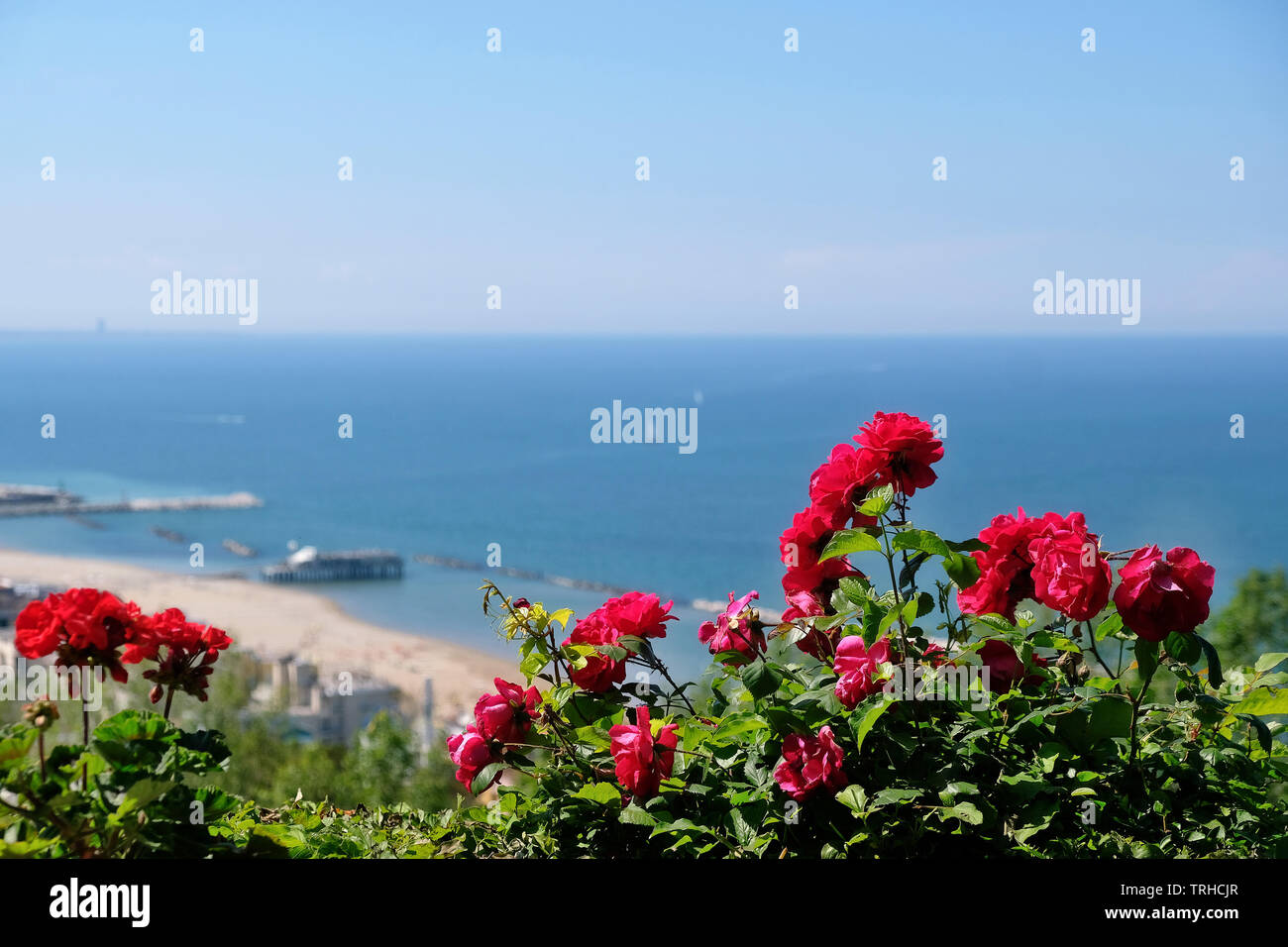 View to the Adriatic coast with Gabbice Mare from the Parco Naturale Monte San Bartolo in the province Marche, Italy. - Stock Image