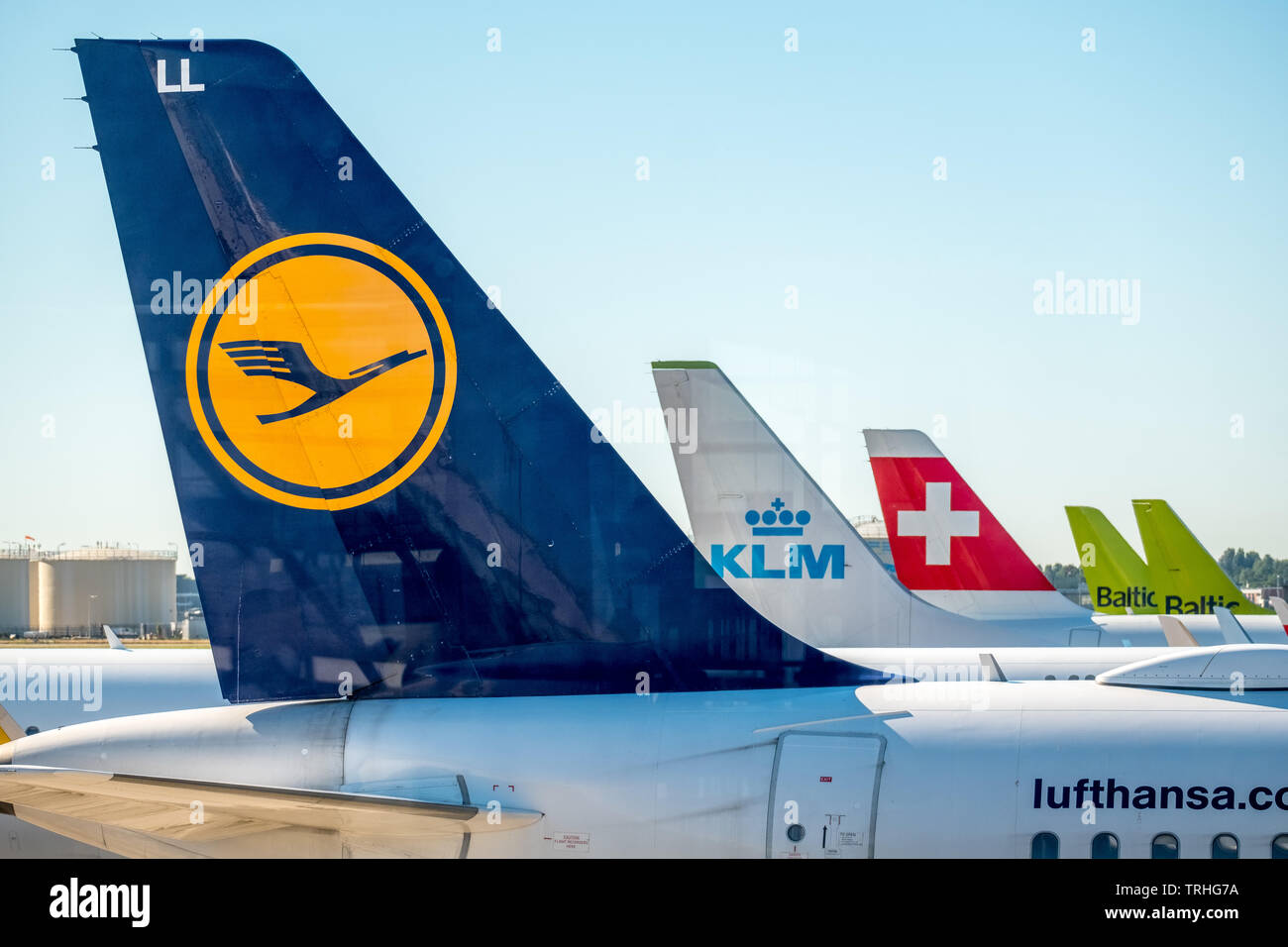 Airfoils of Lufthansa, KLM, Swiss Air and Baltic Air at Amsterdam Schiphol Airport, Noord-Holland, Netherlands, Europe, Schiphol, NLD, travel, tourism - Stock Image