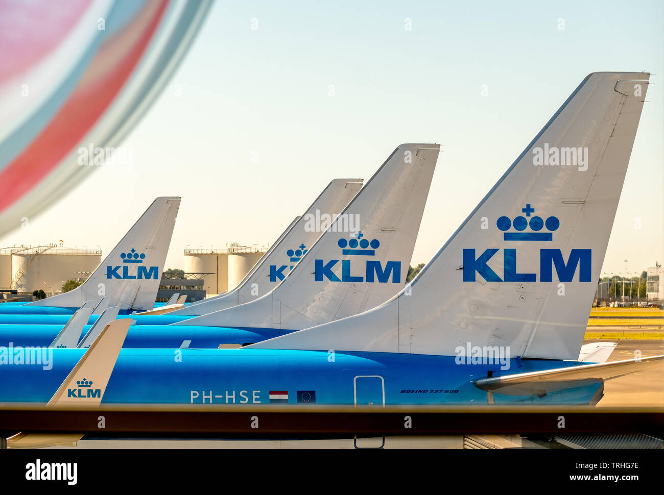 KLM tailplane at Amsterdam Schiphol Airport, Noord-Holland, Netherlands, Europe, Schiphol, NLD, Travel, Tourism, Travel Destination, Sightseeing, Sea - Stock Image