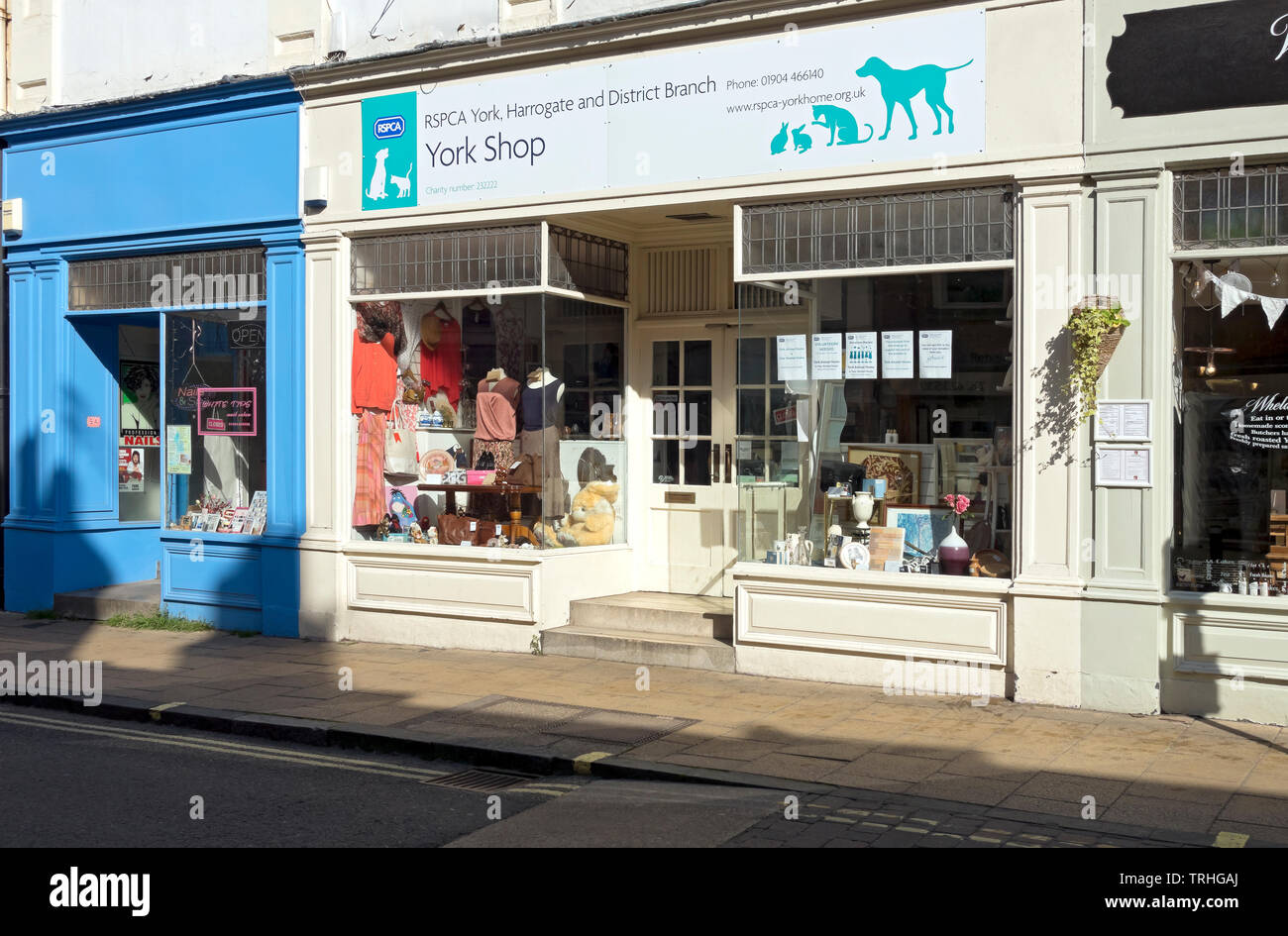 RSPCA charity shop store York North Yorkshire England UK United Kingdom GB Great Britain - Stock Image