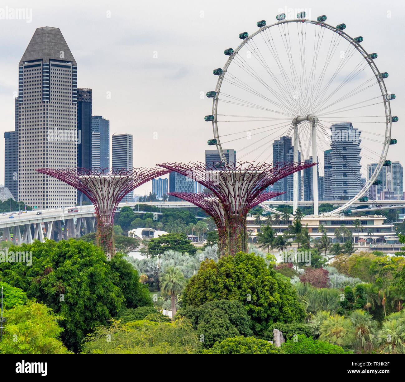 Singapore Flyer Ferris Wheel And Millenia Tower And Supertree Grove Vertical Garden At Gardens By The Bay Singapore Stock Photo Alamy