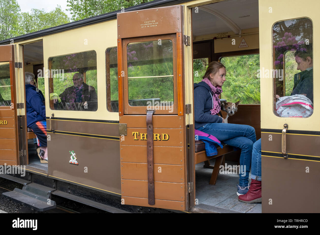 Tourists and dog, doggy,Third Class carriages on platform at Devil's Bridge Station,Vale of Rheidol Steam Railway, near Abertsywyth, Ceredigion, Wales - Stock Image