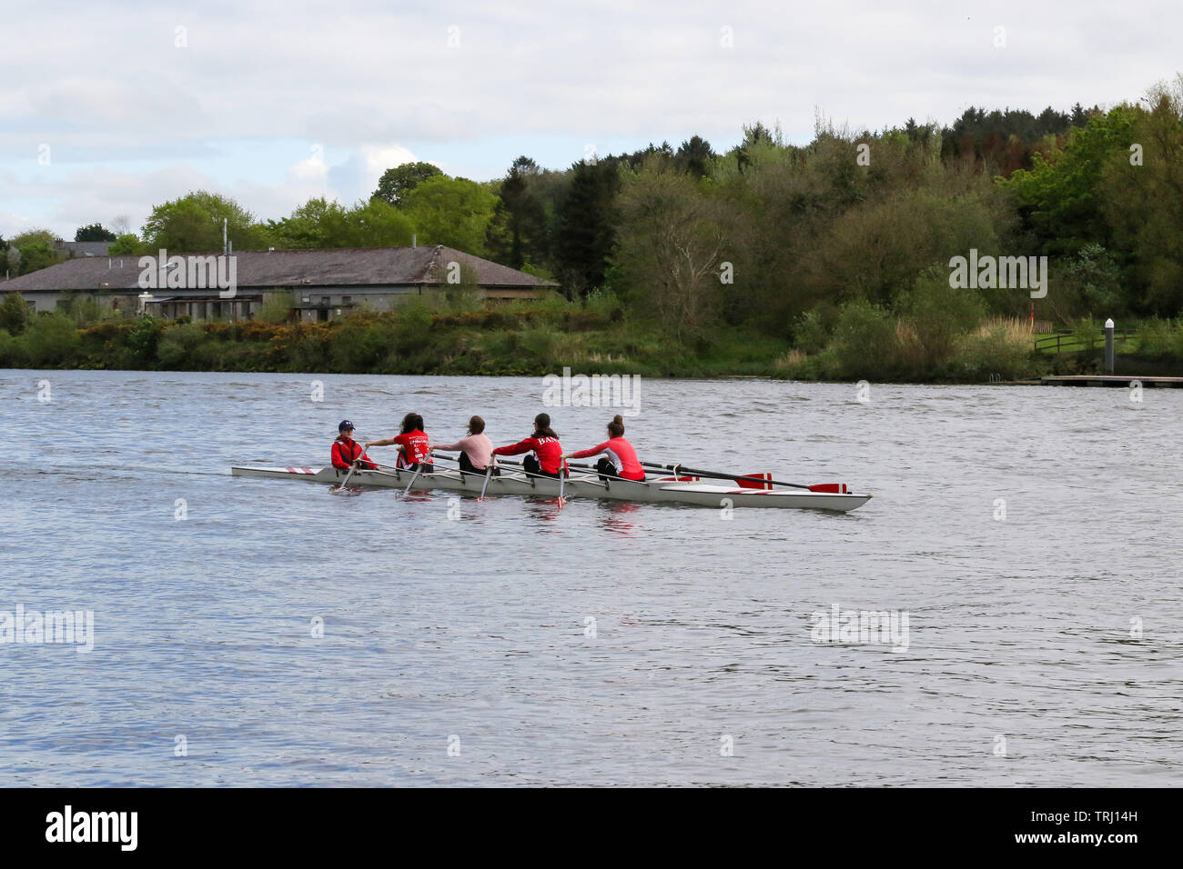 Rowing boat on the River Bann, Castleroe, Northern Ireland, with a women's coxed four pulling towards Coleraine. - Stock Image