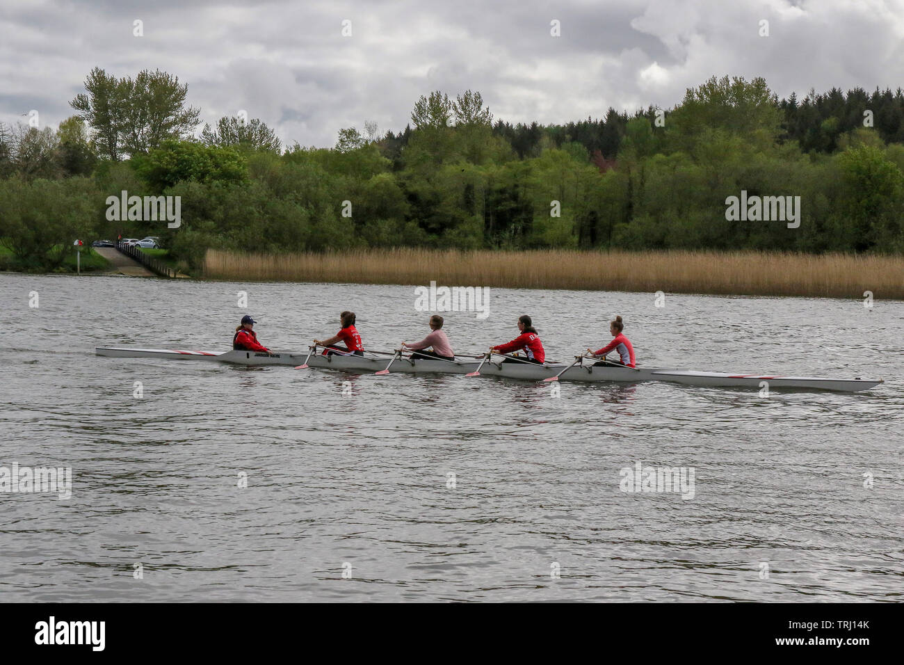 Women rowing on the River Bann at Coleraine in Northern Ireland. - Stock Image