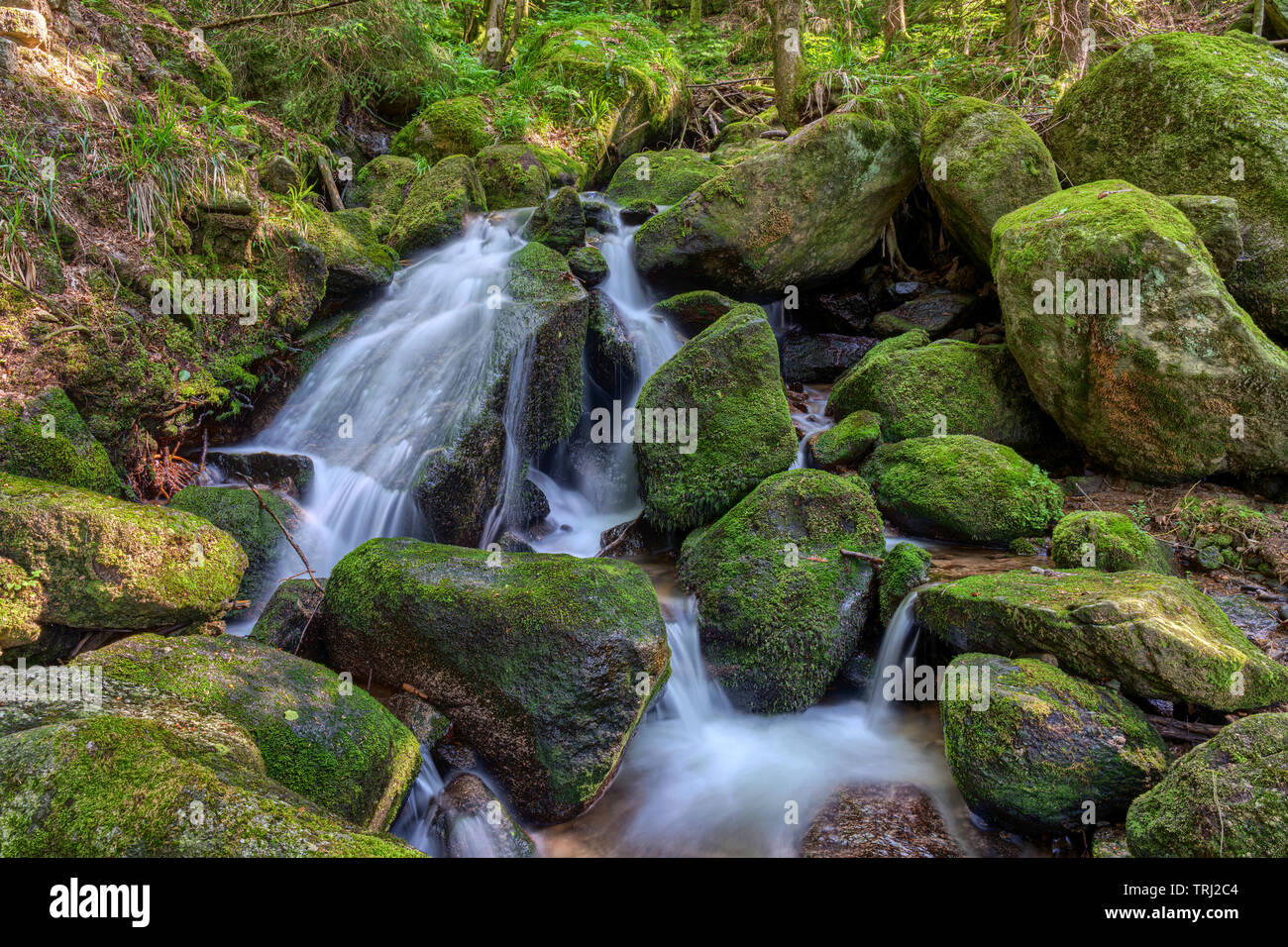 Water streaming over rocky cascades along famous Gertelbach waterfalls, Black Forest, Germany - Stock Image