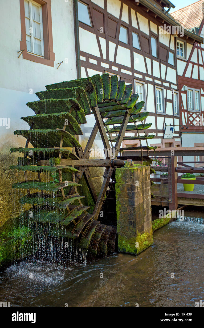 Historical water mill at the Queich stream, old town of Annweiler am Trifels, Rhineland-Palatinate, Germany - Stock Image