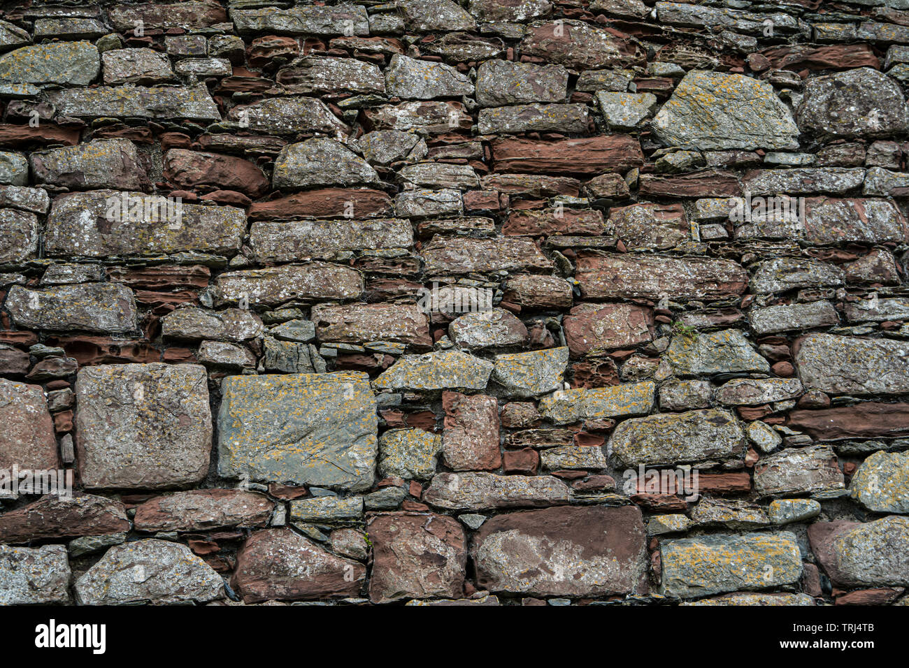 Detail of a stone wall, Peel Castle, Isle of Man, UK - Stock Image