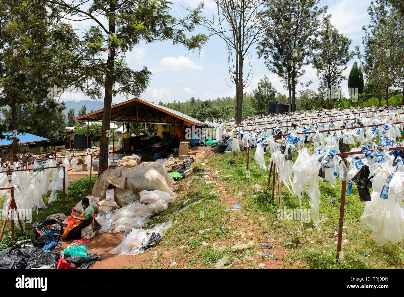 RWANDA, Kigali, plastic recycling at company ecoplastics, worker clean and dry plastic foils before processing to granulate which is used for new plastic products , More images: www.visualindia.de Stock Photo