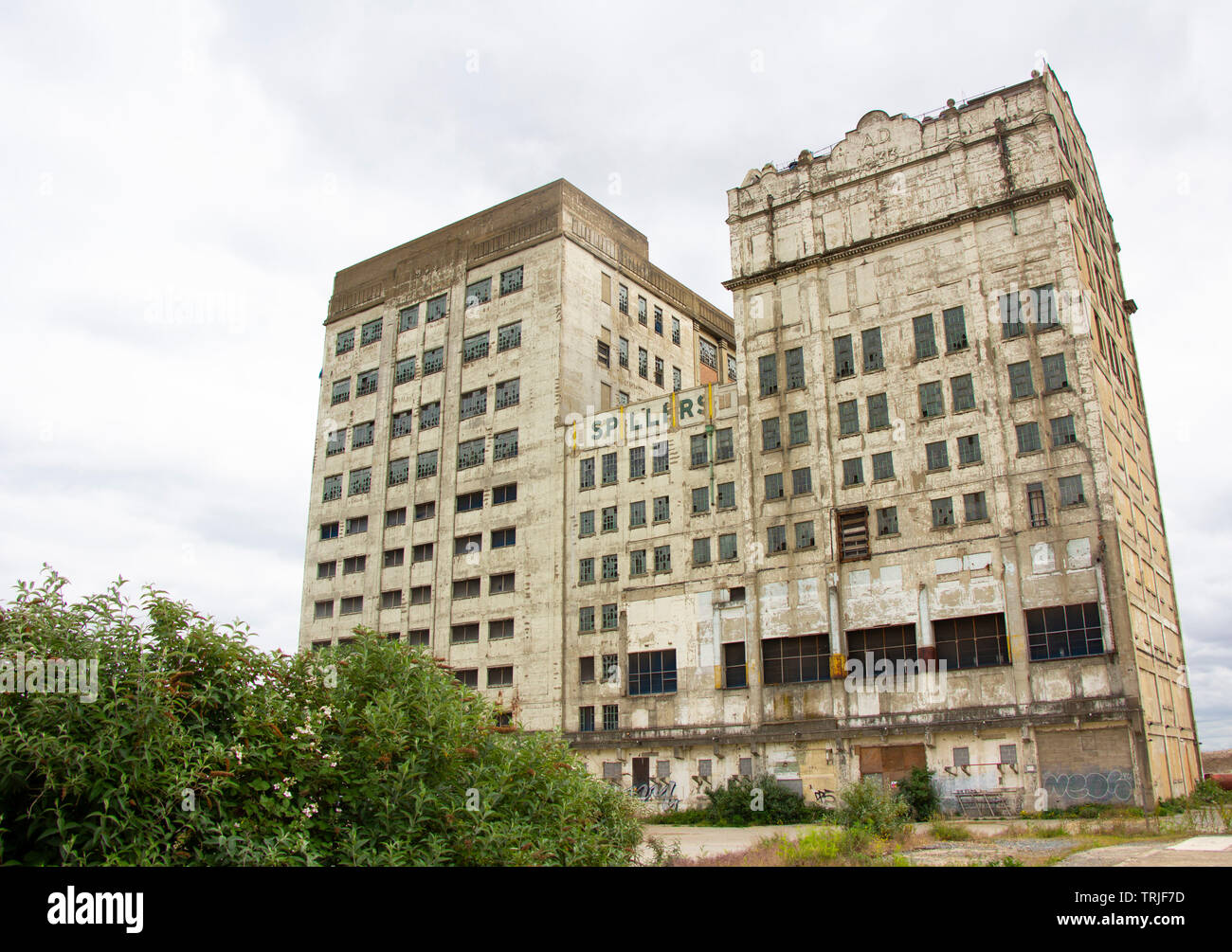 Millennium Mills in Silvertown, London - Stock Image
