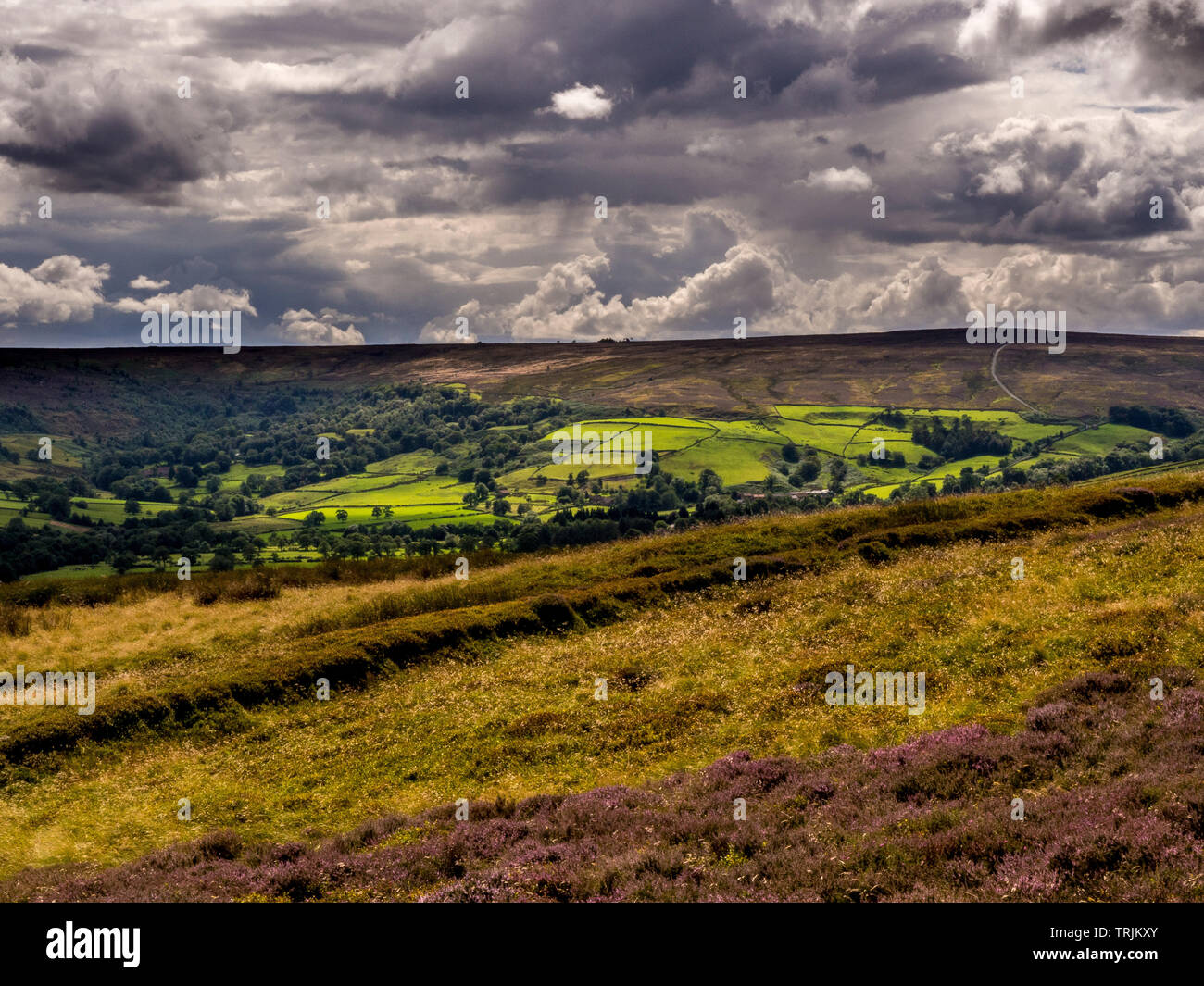 View south over moors from Glaisdale Rigg, North Yorkshire Moors, UK. - Stock Image