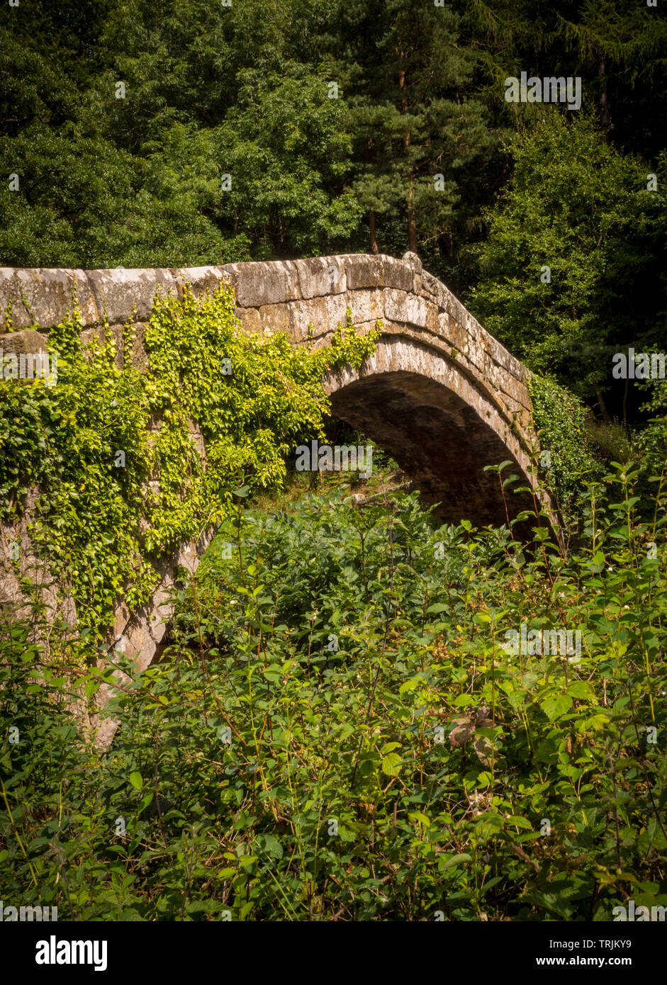 Beggar's Bridge over the River Esk, Glaisdale, North Yorkshire Moors - Stock Image