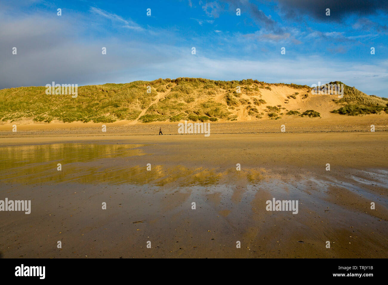 Solitary walker dwarfed by high sand dunes under blue sky that's reflected in water of receding tide at beach at Dunnet Bay, Caithness Scotland - Stock Image