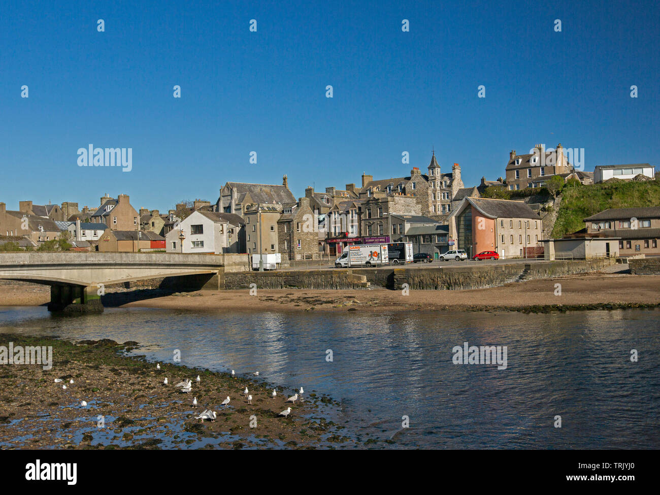 Town of Wick, Caithness Scotland with buildings huddled beside River Wick and arched bridge, with seagulls in foreground, under blue sky Stock Photo