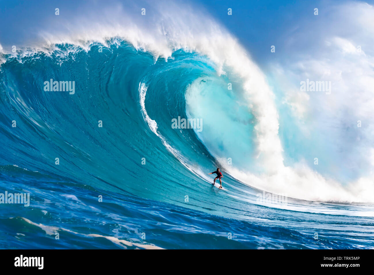 A tow-in surfer drops down the face of Hawaii's big surf at Peahi (Jaws) off Northshore Maui. - Stock Image