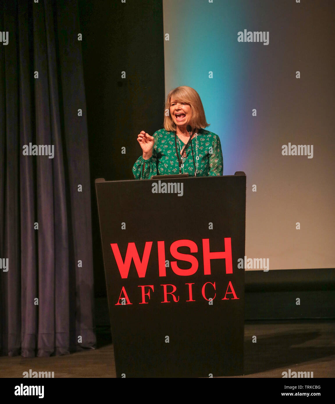 London, UK. 8th June 2019 Harriett Baldwin MP.  Appointed as Minister of State for Africa at the Foreign and Commonwealth Office and Minister of State at the Department for International Development on 9 January 2018. Opening the Wish Africa Expo in London Olympia , a two day, multi-industry conference showcasing the best of Africa in Architecture, Technology, Art, Fashion, Food and Drink as well as Travel.Paul Quezada-Neiman/Alamy Live News - Stock Image