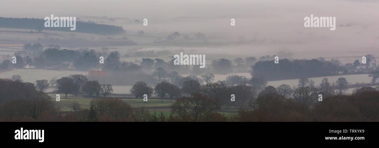 Misty morning in the Blackdown Hills, Somerset,UK - Stock Image