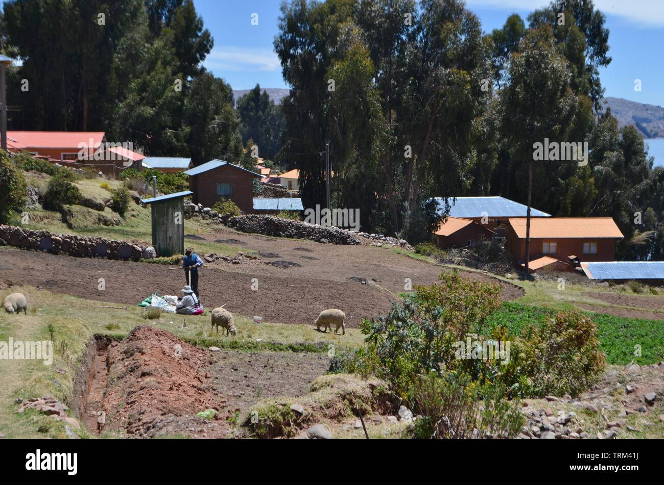 Peru,Puno. Rural houses in the countryside near Lake Titicaca. Stock Photo