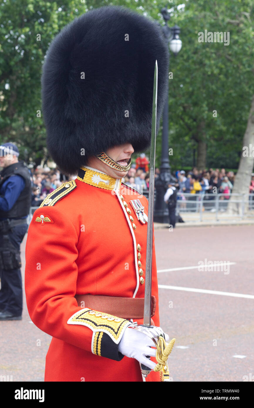 Officer of the Welsh Guards for Trooping the colour 2019 - Stock Image