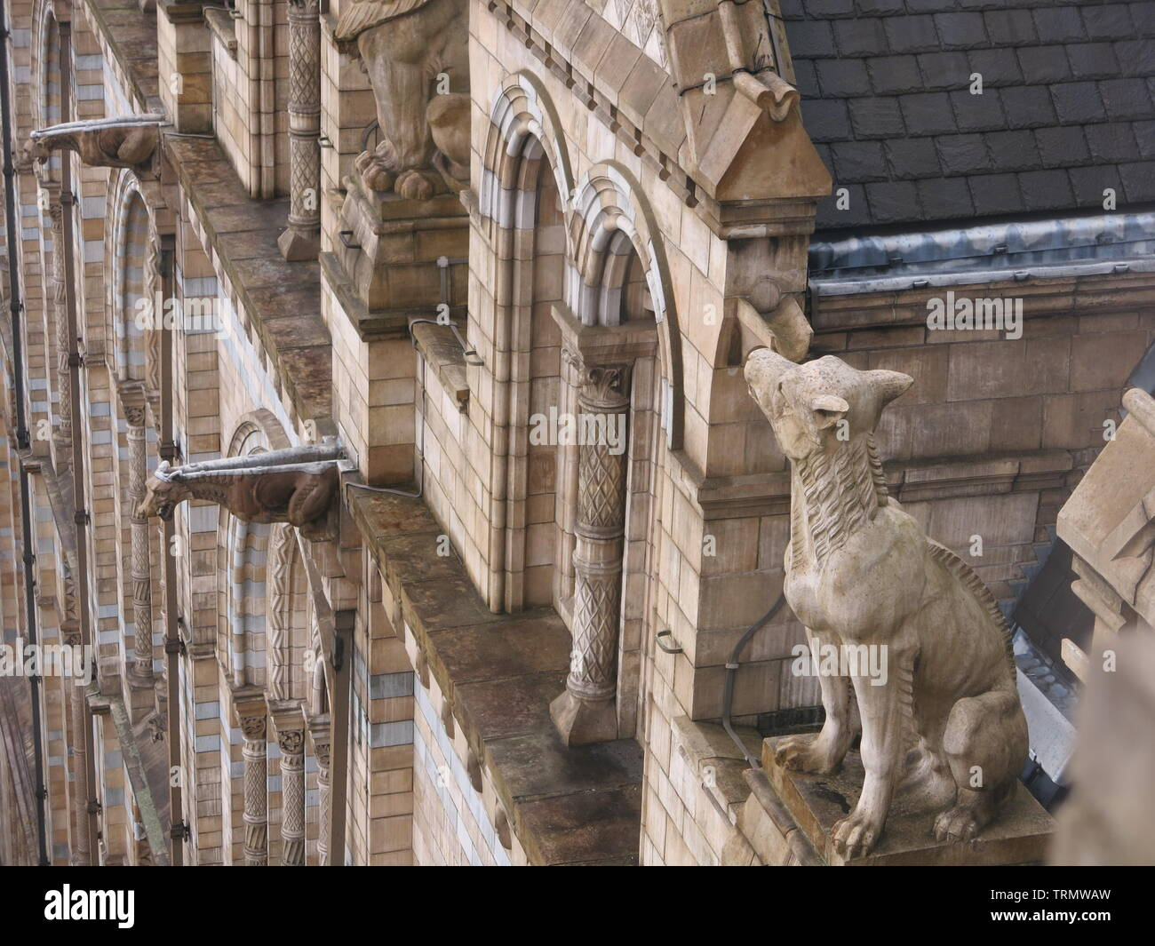 Photo of the ornate terracotta stonework and statues high up on a façade of the Natural History Museum, an iconic London landmark in Romanesque style Stock Photo