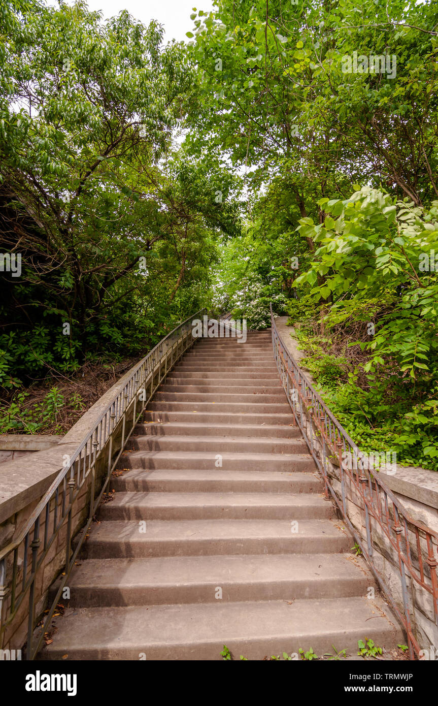 Steps in the woods in Highland Park, located in Pittsburgh