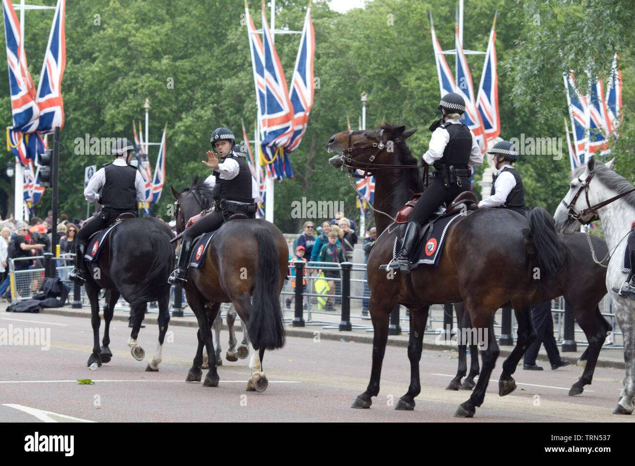 Mounted Police on the Mall for trooping the colour 2019 - Stock Image
