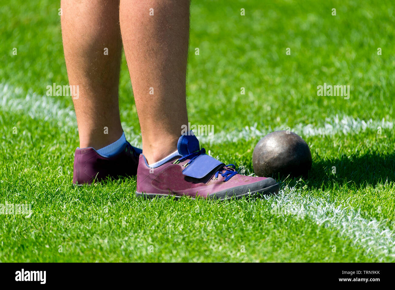 Sportsman in shot put sector on competition - Stock Image