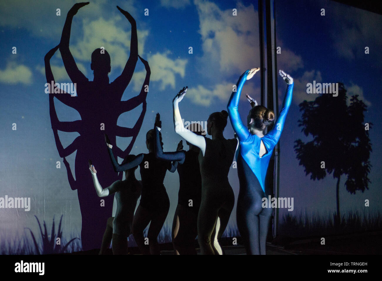 Artists of Teulis Shadow Theater during the performance in