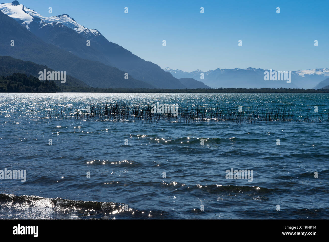 The tranquil waters of lake Yelcho sparkle in the sunshine, Northern Patagonia, Chile - Stock Image